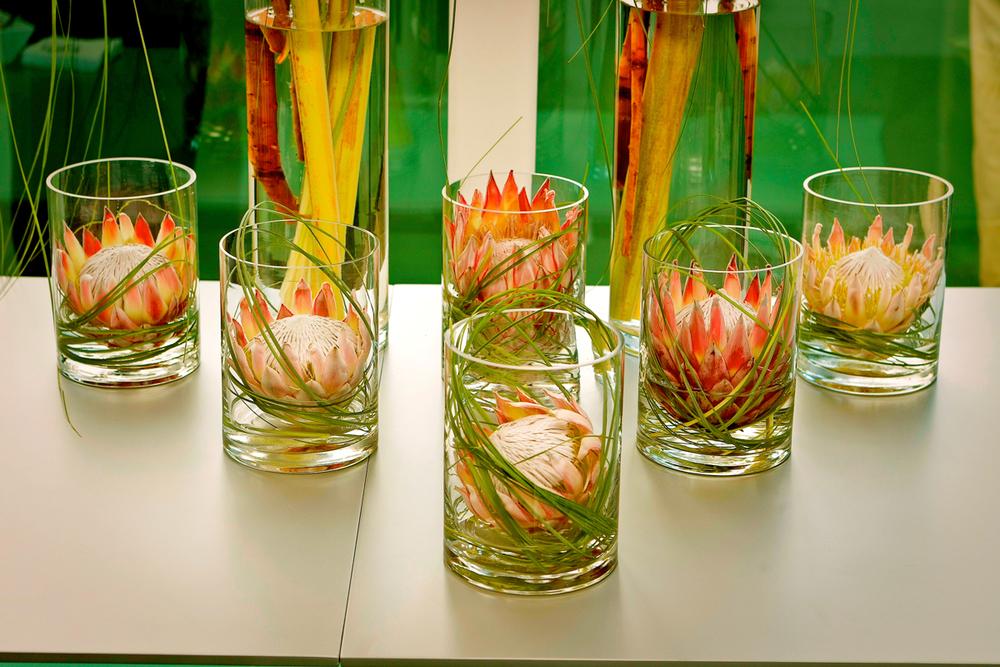 Protea King Head Flower Arrangement