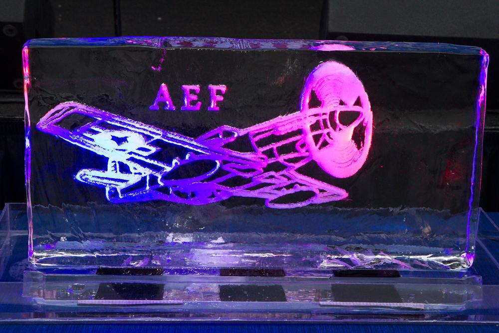 Airplane Ice Sculpture