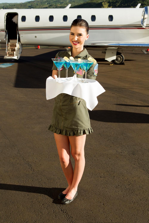 Aspen Flight Model