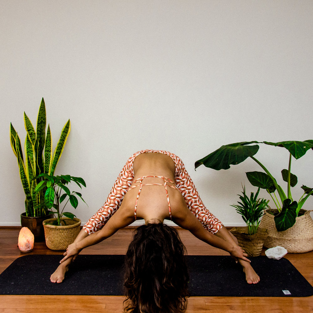 Santa Barbara Yoga Photographer Miranda Kelton Laura Goe Psychedelic Honey-80.jpg