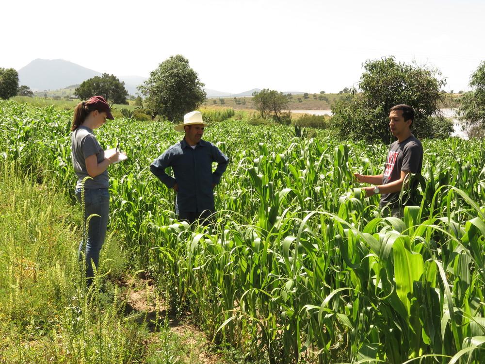 Elizabeth Sherwin and Paul David interviews beneficiaries of Sistema Biobolsa, a Mexican social enterprise. Photo Credit: Santa Clara University