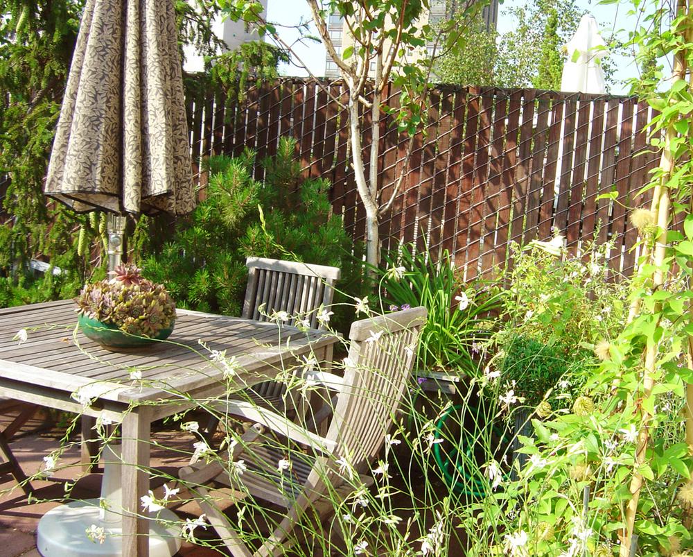 weiss garden 004.jpg