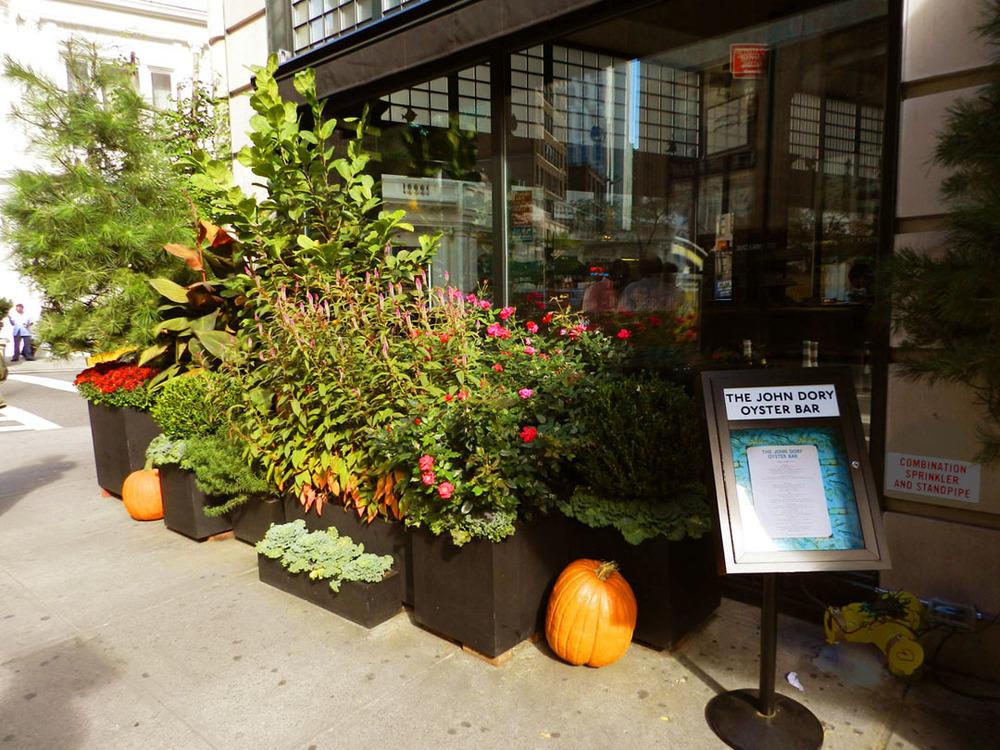 breslin dory fall 2011 015.JPG