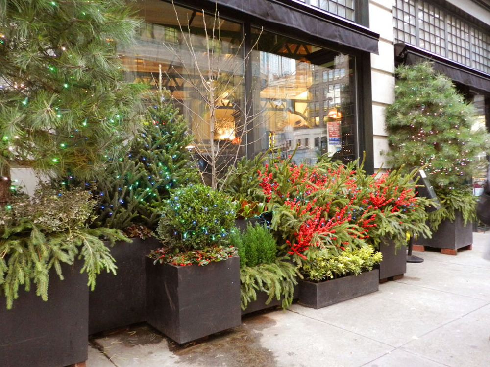 gardens 2011 079.JPG