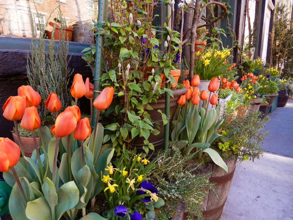 restaurants spring 2012 012.JPG