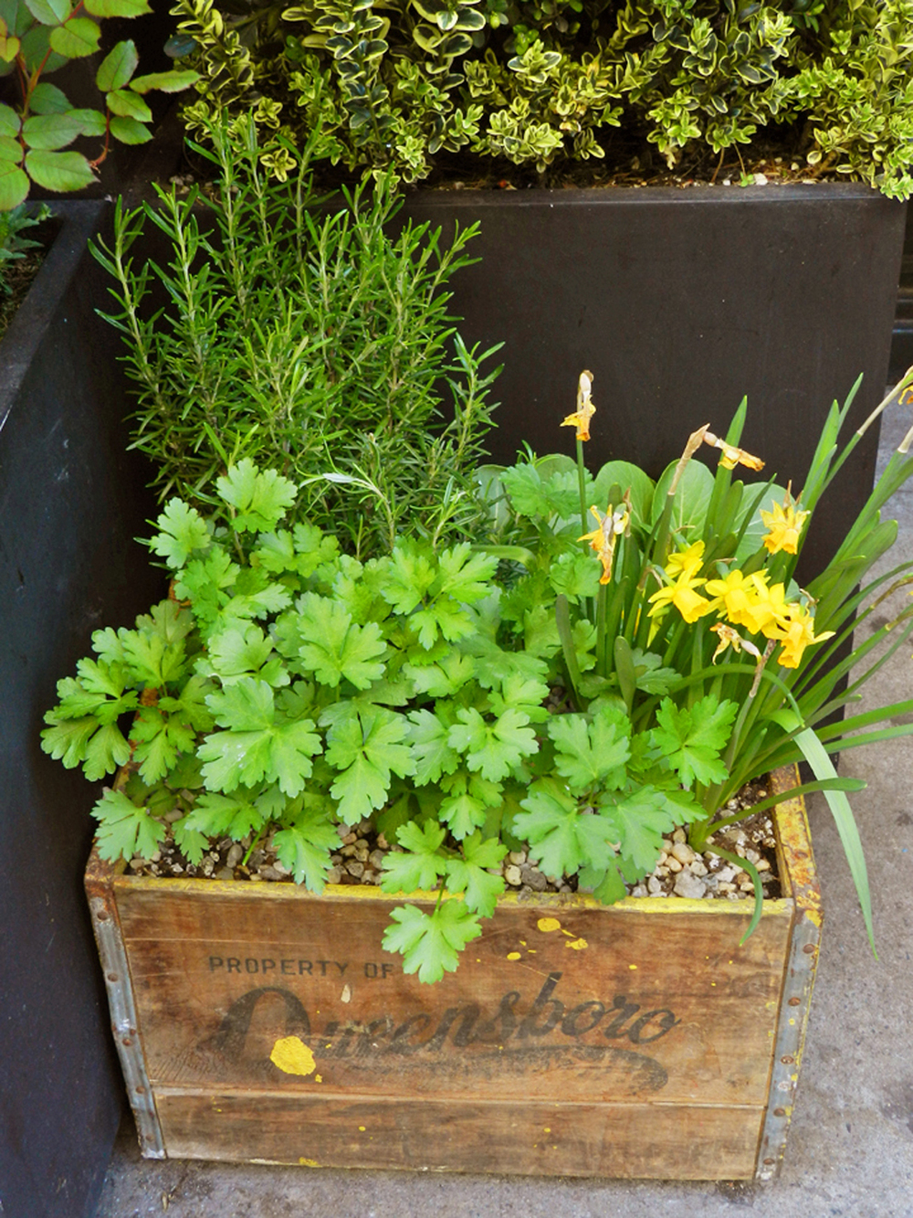 restaurants spring 2012 060.JPG