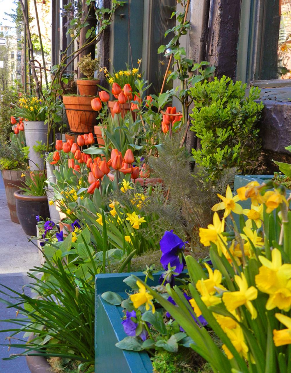 restaurants spring 2012 018.JPG
