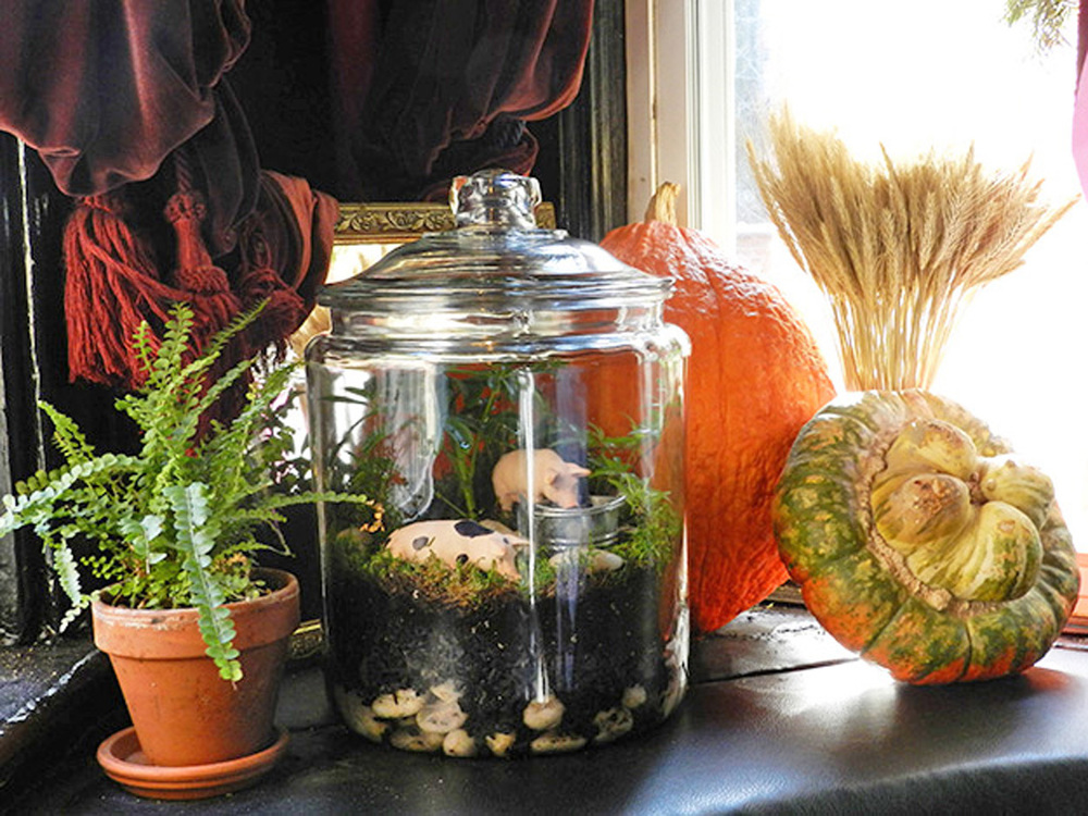 spotted_pig_winter_2012_terrarium_023.jpg