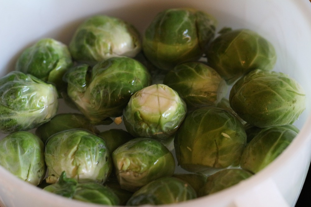 brusselsprouts-721594_1280.jpg