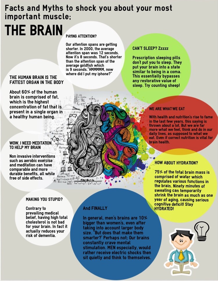 10 facts about your most important organ the brain the child development centre