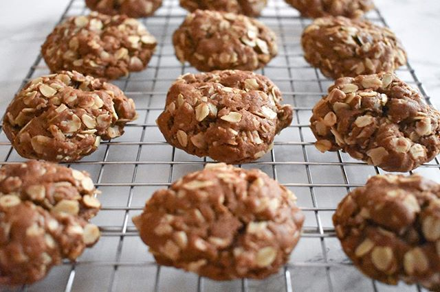 Made a batch of these chocolate peanut butter oatmeal cookies last week. And by batch, I mean 40+ cookies that I tried to feed to pretty much everyone I know. Grab the recipe from @emilyruthweir by tapping the link in my bio.