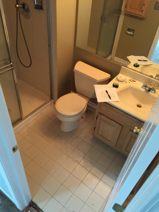 The Bathroom Before: Big Box Remodeling