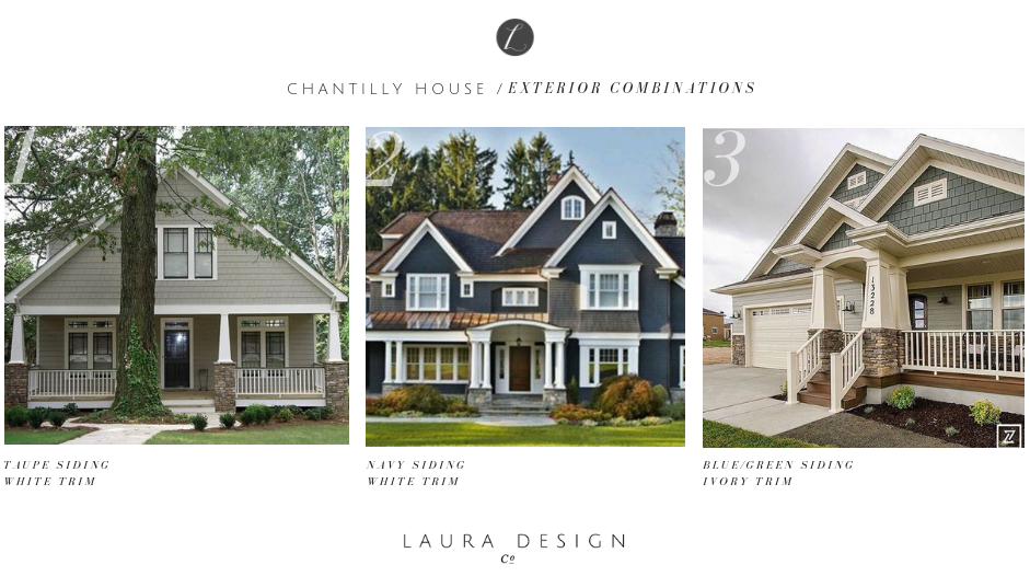 Exterior Elevation Design Schemes- Laura Design Company, Chicago Interior Design Firm