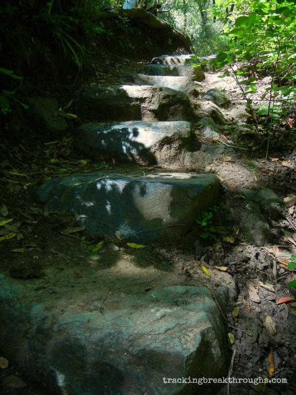 hike steps