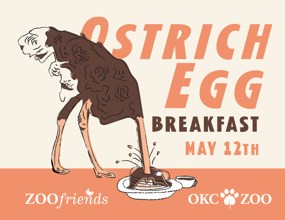 Ostrich-Egg-Web-Slide-18.jpg