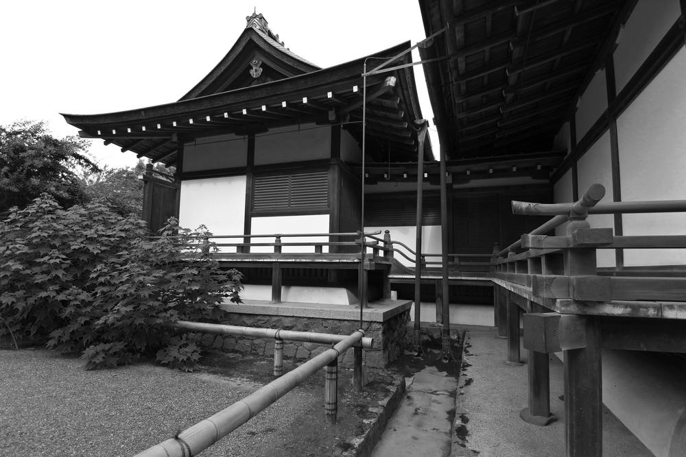 Tenryu-ji Temple (天龍寺)