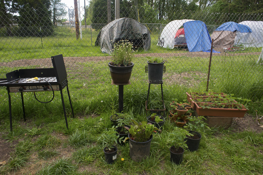 Eugene, ORE. - A detail of the Nightingale camp site. Members who enjoy gardening and growing vegetable create a garden. Photo by: Debra Josephson