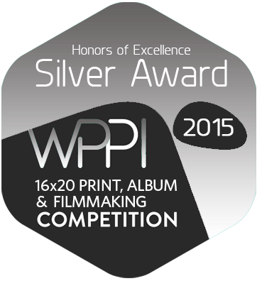 2015wppi16x20-SilverAward.png