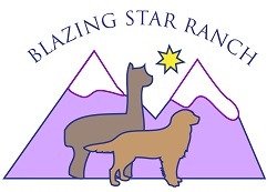 Blazing Star Ranch - 3424 S BROADWAY, ENGLEWOOD, CO 80113Phone: (303) 514-8780blazingstarranch@gmail.com