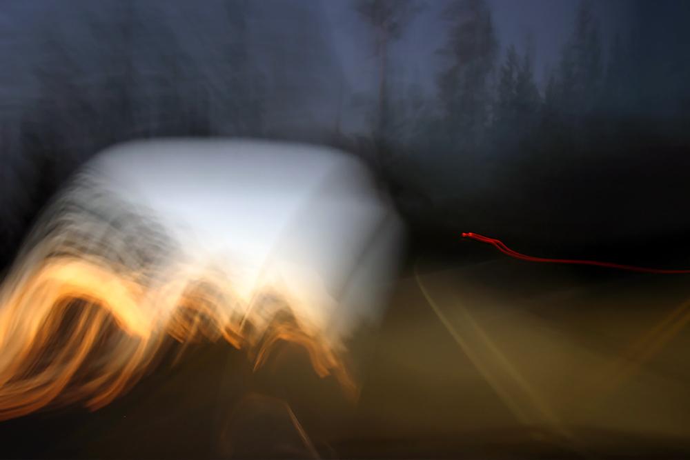 Yellowstone-White Buffalo