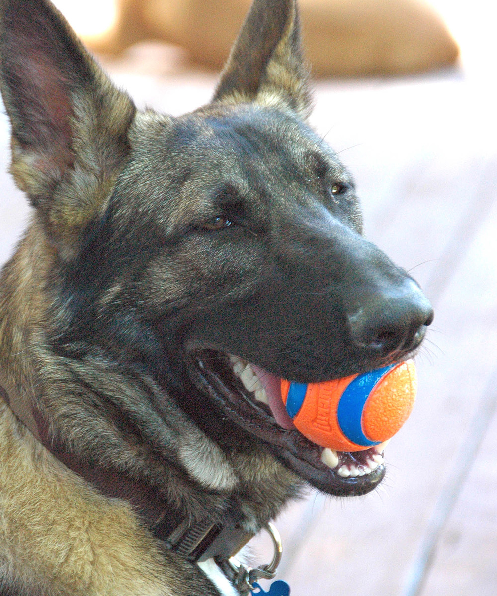 Kagan is always happy when there is a ball involved.