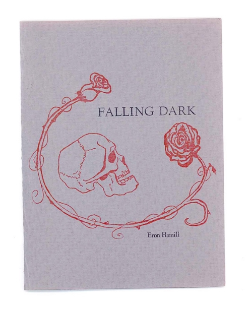 Falling-Dark-Cover-Web.jpg