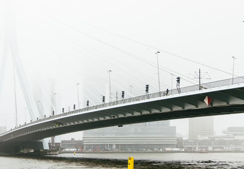 Richard_John_Seymour-De_Rotterdam_01.jpg