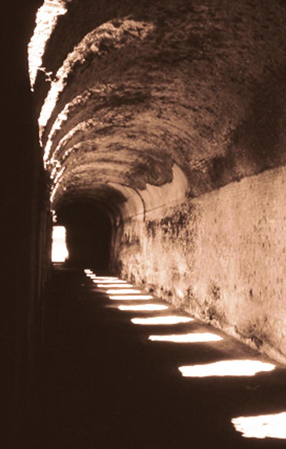 Hadrian-crypto-bright.jpg