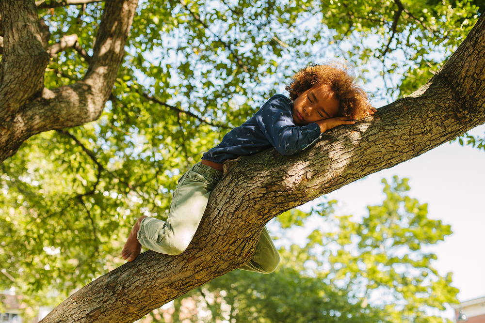 boy asleep in vermont tree web.jpg