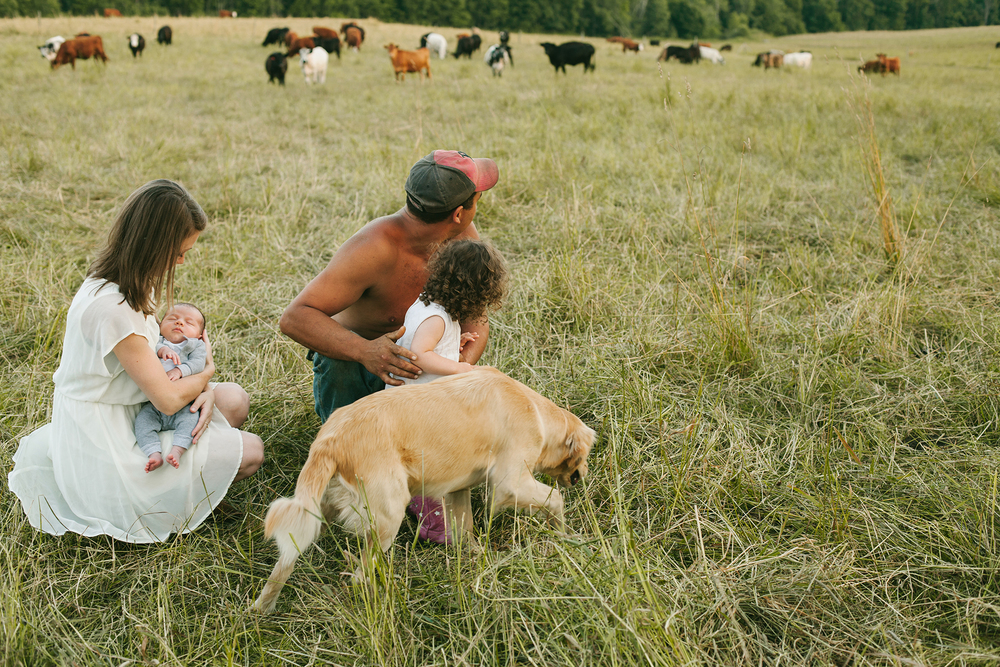 vt farming family in cow field web.jpg