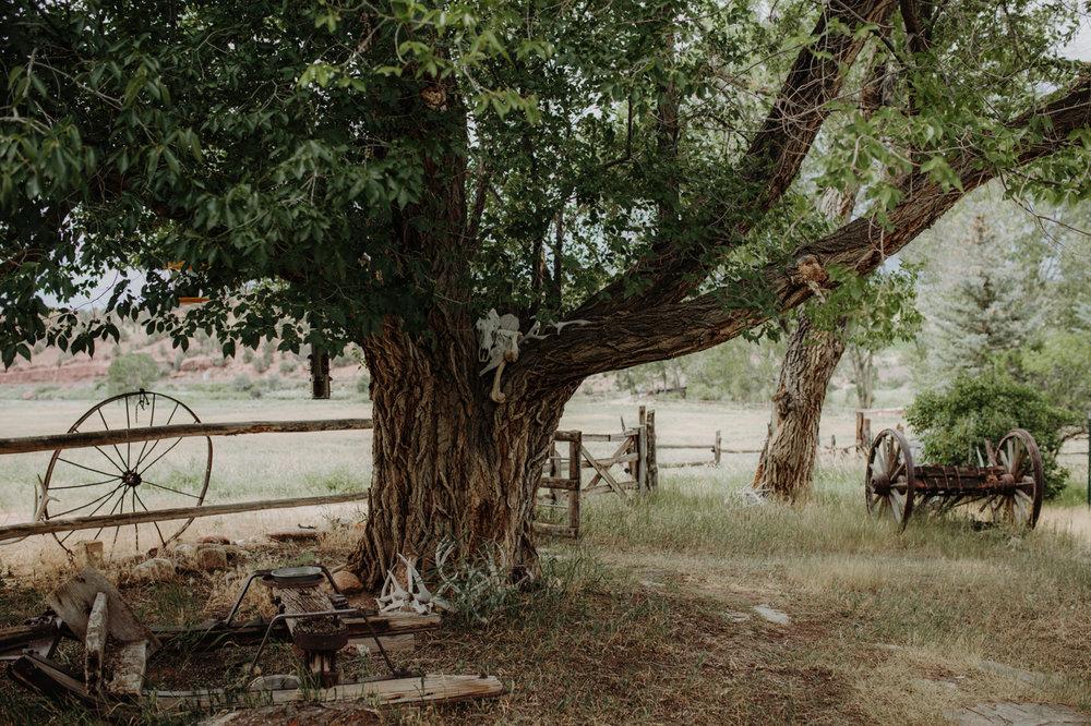 001-jones-max-colorado-ranch-engagement-photos.jpg