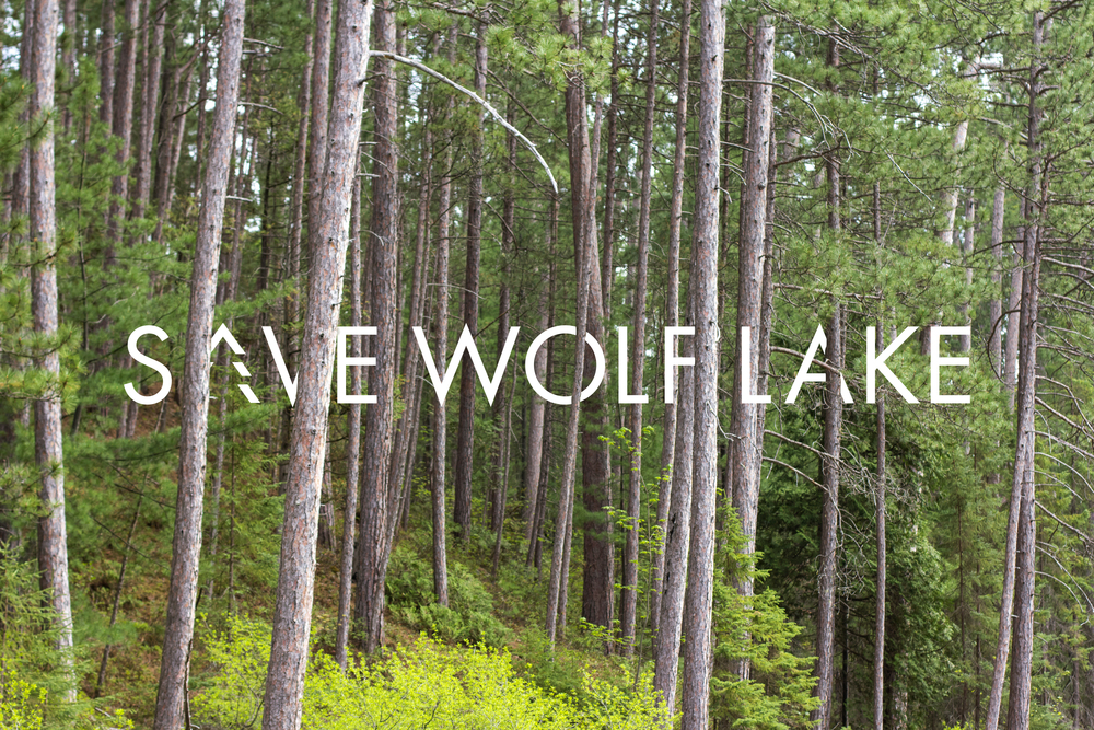 Save Wolf Lake logo design by Red Tent Media.