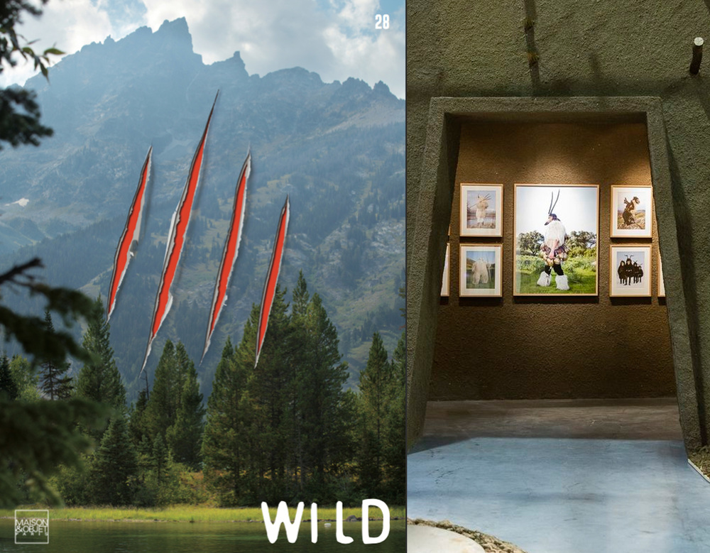 M&O wild.jpg