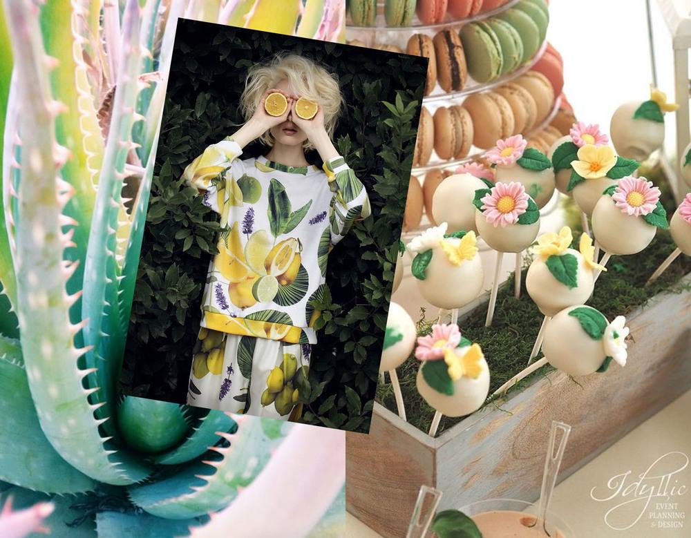 candy bar  Idyllic Events  - fashion image via  Little Big Bell  - cactus via  Escape Button