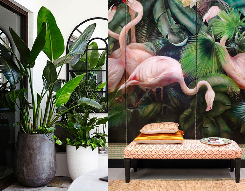 image on  Pinterest  - Flamingo print via  Interiorator