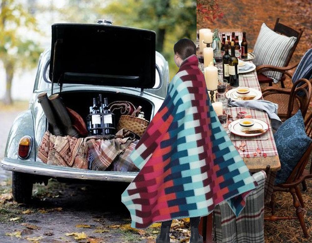 pic-nic with old VW via  Ritzy Bee Blog  - Asmund Blanket  Roros Tweed  - table setting outdoor via  Pinterest
