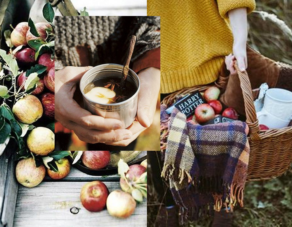pples via  Lauren Liess  - warm cider via  Country Living  - picnic in the woods via  Pinterest