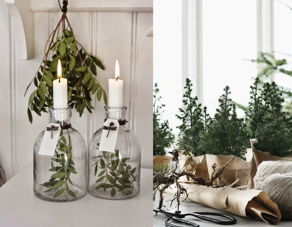 green in a bottle via Un Due Tre - mini Christmas tree via Residence Magazine