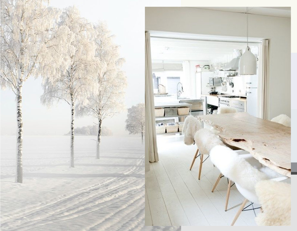 winter image via   Expressions of nature   - white interior via  Looks Like White