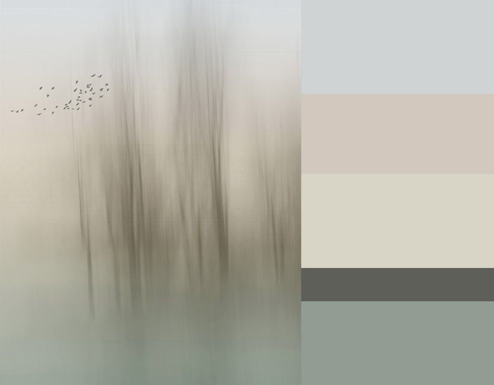 Breeze of Winter via  Fotoblur  - colors from top down Skylight 205  Farrow & Ball  - Coquette Lt. 146  Sanderson  - Silverflake 7  Sanderson  - Bastille 165  Sanderson  - Double la Seine  Farrow & Ball