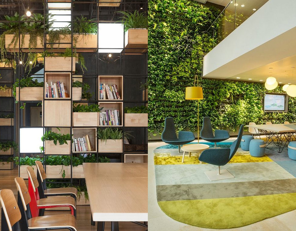 Plants improve the performance in the office