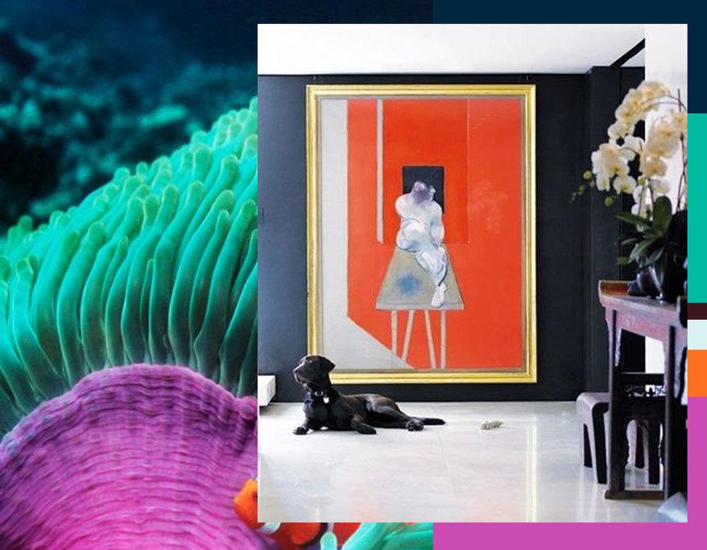 interior image via Daily Dream Decor