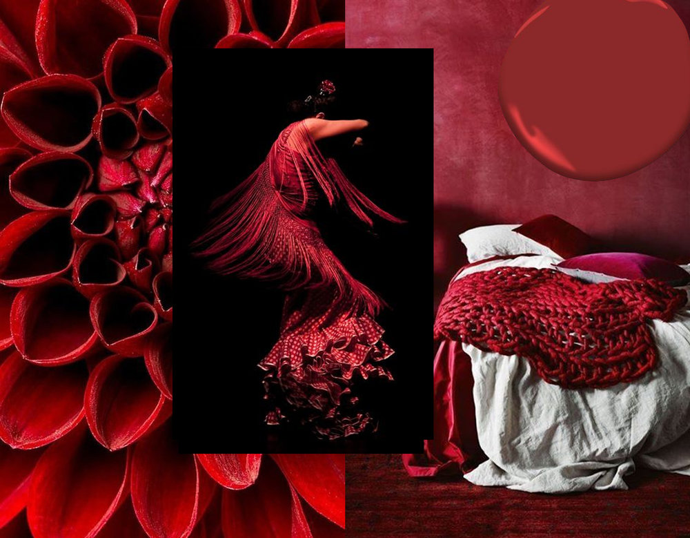 flower image via Ana Rosa - Flamenco via Zoom - bedroom via Eu Decoro