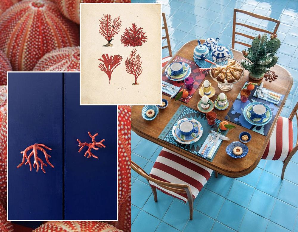 sea urchins  Conchking  - coral door knobs  La Minervetta - coral print via  Vintage Illustrations  - dining area  La Minervetta