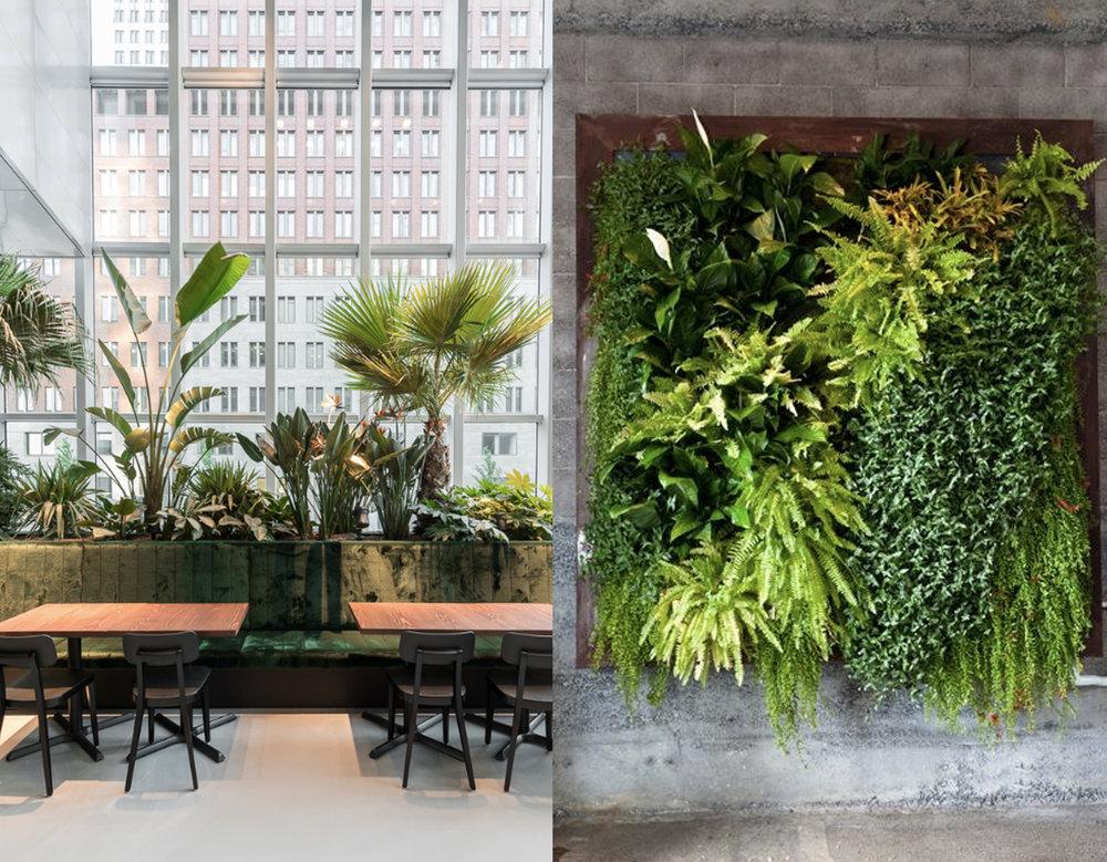 open space via  Archdaily - vertical green wall via  Organic Gardening