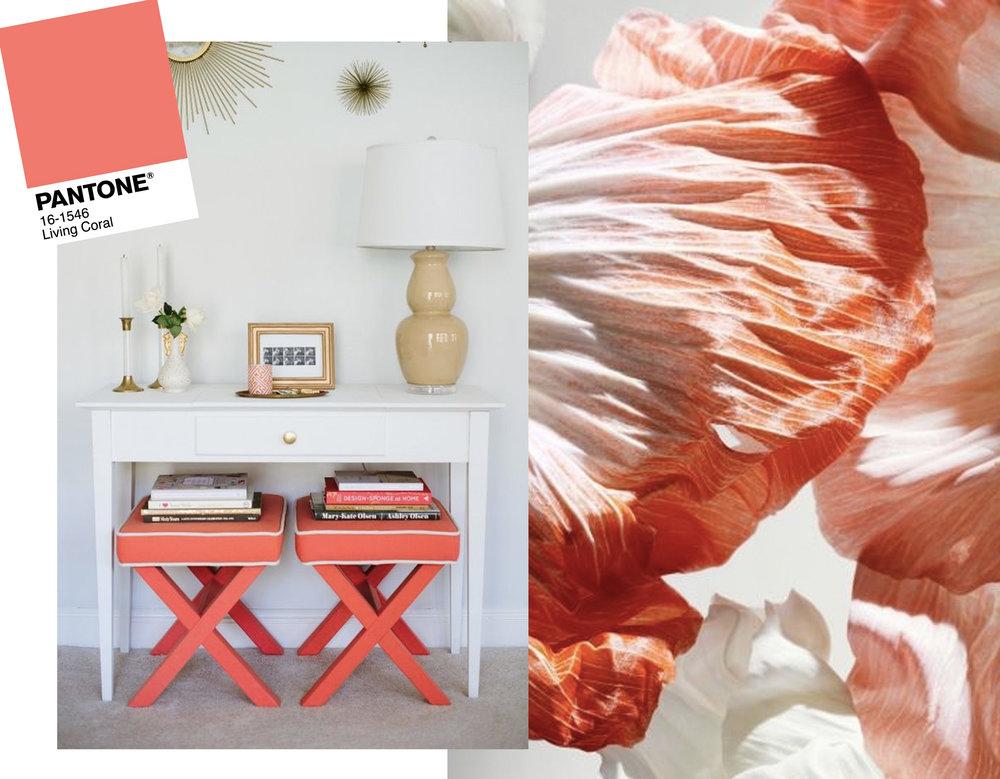 entrance hall via  Target  - flower image via  Pinterest
