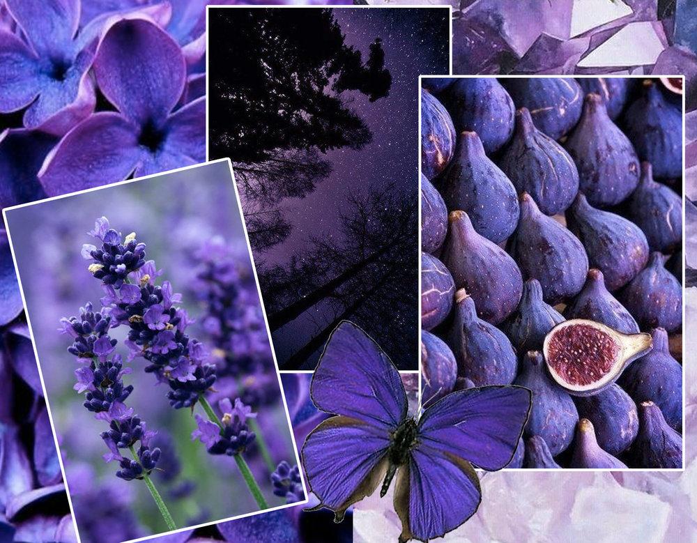 violets via  J Birdny  - lavender via  Ramblings from Jewels  - sky via  Flickr  - butterfly via  Ebay  - figs via  Flickr