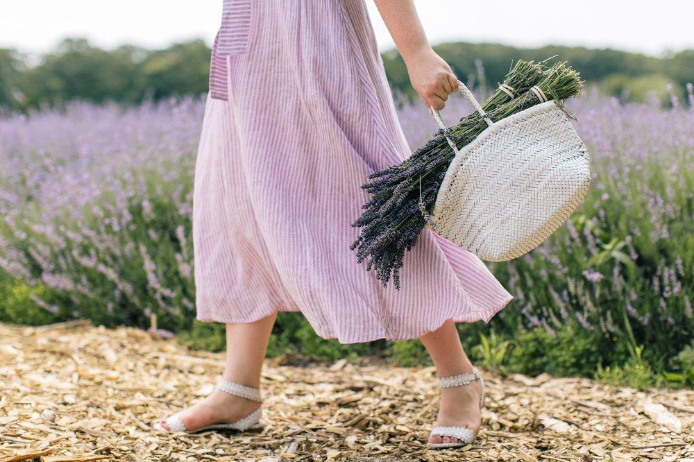 lavenderbythebay-8.JPG