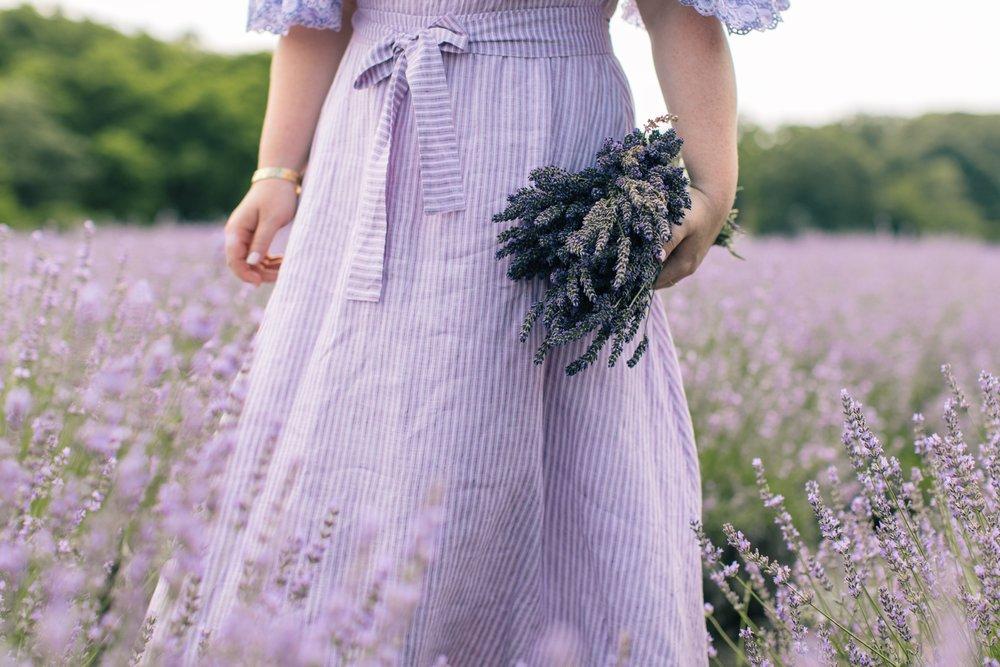 lavenderbythebay-3.JPG