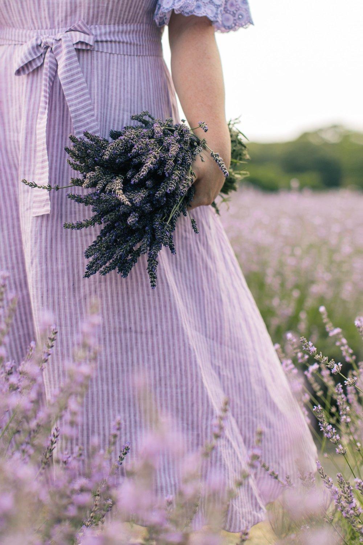 lavenderbythebay-5.JPG
